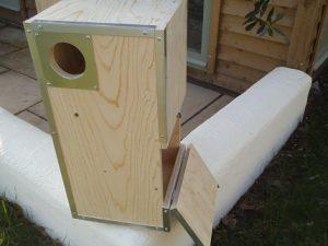 biru-fronted amazon Nest Box