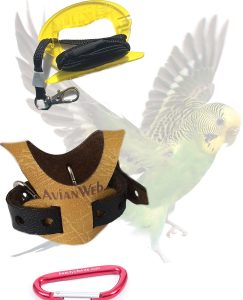 Avianweb EZ Bird Harness with Leash