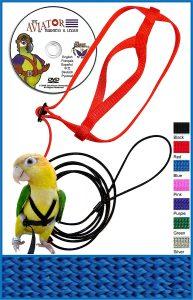 Aviator Pet Bird Harness and Leash