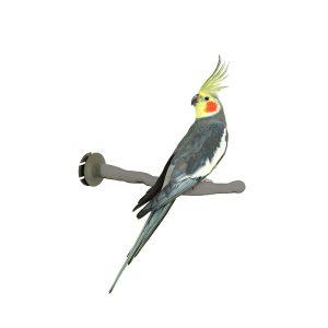 Thermo Perch Heated Bird Perch